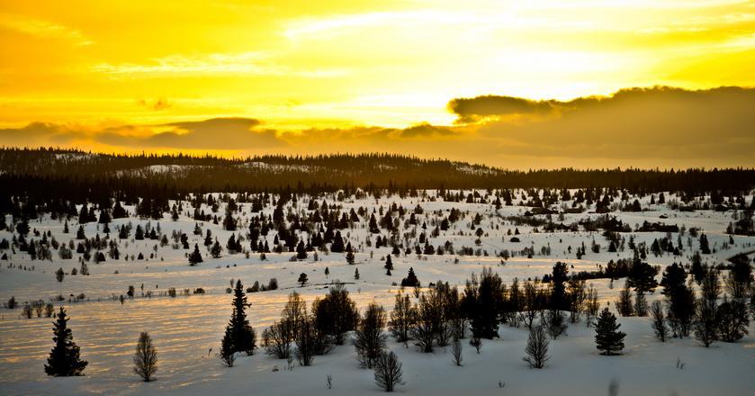 Norwegia - kraj wiecznej zimy i ludzi lodu