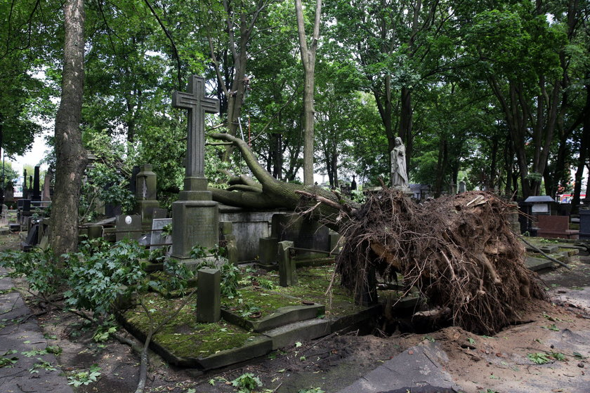 Burza zdemolowała zabytkowy cmentarz