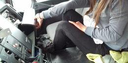 Inspektorzy skontrolowali ciężarówkę. W kabinie był... cielak!