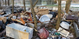 Miasto sprząta, poznaniacy zaśmiecają