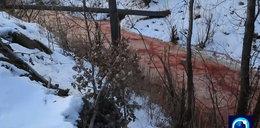 Wstrząsające odkrycie w Rosji. Woda w rzece zmieniła kolor. Wygląda jak krew!