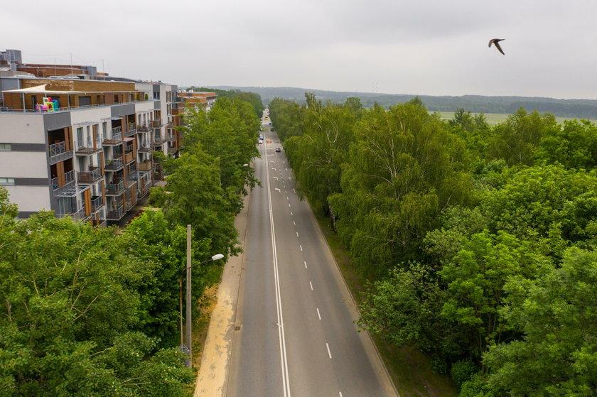 Katowice. Miasto chce wyciąć ponad 100 drzew pod budowę ścieżek rowerowych