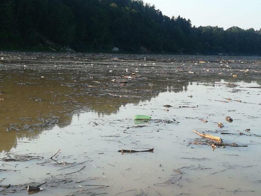 Katastrofa ekologiczna na południu Polski? Jezioro Rożnowskie zamieniło się w wysypisko śmieci