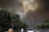 Grčka požar EPA ALEXANDROS VLACHOS