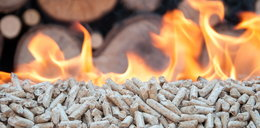 Uwaga! Toksyczny pellet palony w domowych kotłach truje Polaków
