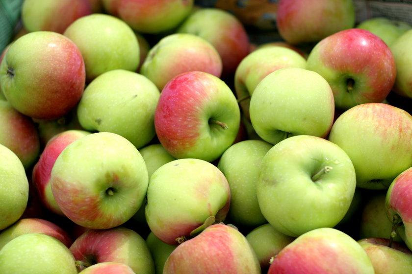 Polskie jabłka zakazane w Rosji