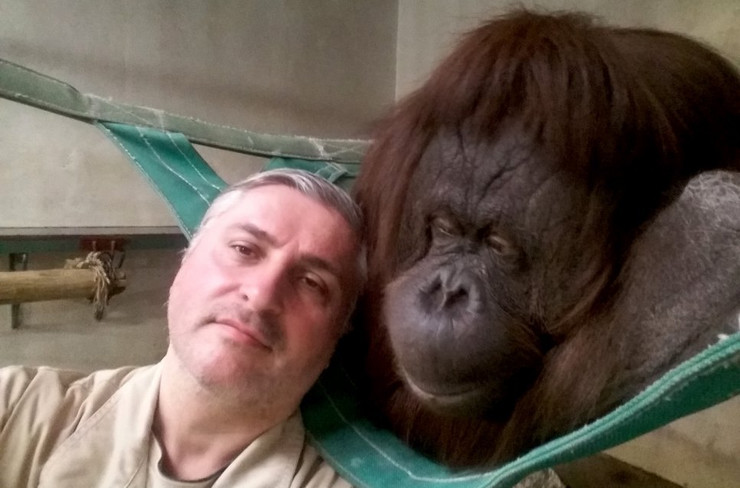 Zoran Rajić beo zoo vrt