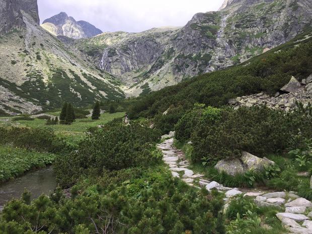 Kwitnąca łąka na dnie Malej Studenej doliny. W głębi doliny widoczny jej drugi próg a na jego wierzchołku można już dostrzec Téryho Chatę.