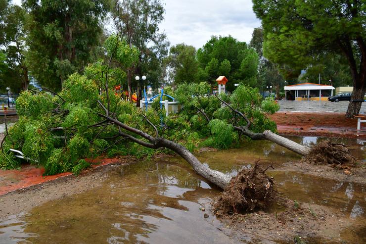 Grčka poplave EPA EVANGELOS BOUGIOTIS