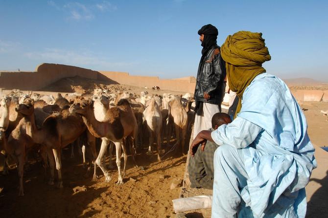 Kod MERS-a posrednik su bile kamile