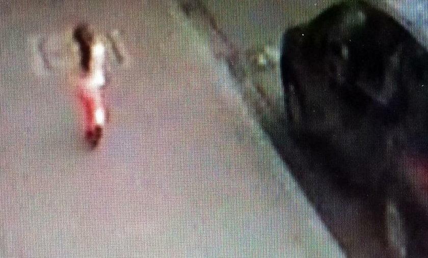 Trzylatka ubrana w koszulkę z krótkim rękawem błąkała się po ulicy