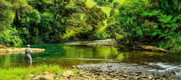 Reka Avakino u blizini imanja