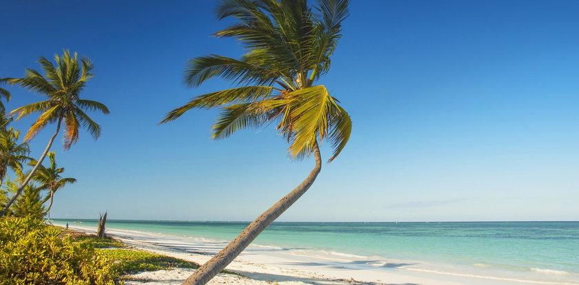 Bogaci Polacy uciekają na Zanzibar. Rząd zabrał głos! Słowa Niedzielskiego brzmią groźnie...