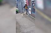 AP_pas_stap_i_kapija_vesti_blic_safe
