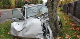 Potworny wypadek. Emerytka zabiła się na drzewie