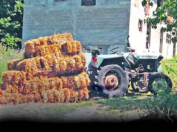 Traktor Jabukovac