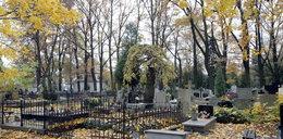 Jak dojedziemy na cmentarze we Wszystkich Świętych?
