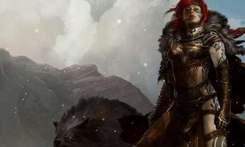 Guild Wars 2 otrzyma publiczną betę?