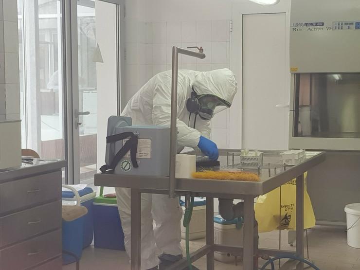 Kraljevo 01 - Laboratorija VSI - Foto N Božović