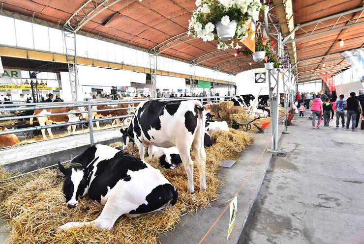 Poljoprivredni sajam
