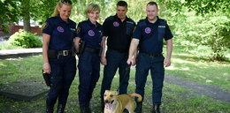 Powstała nowa grupa interwencyjna straży miejskiej
