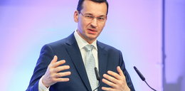 Polska firma podbija niemiecki rynek!