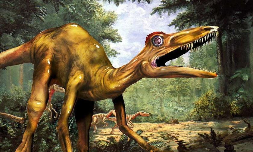 Dinozaury biegały pod Kielcami!