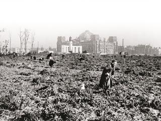 Berlin, Potato Cultivation / Photo 1945