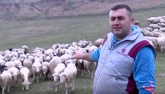Dalibor Bogunović
