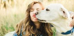 Złe wieści dla właścicieli psów. Te badania są niepokojące