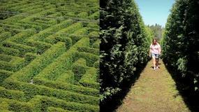 Wielki zielony labirynt w Hiszpanii
