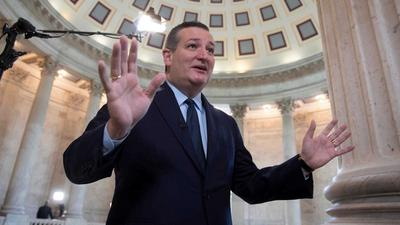 Ted Cruz photographed without a face mask as he flew commercially from Houston to Dallas