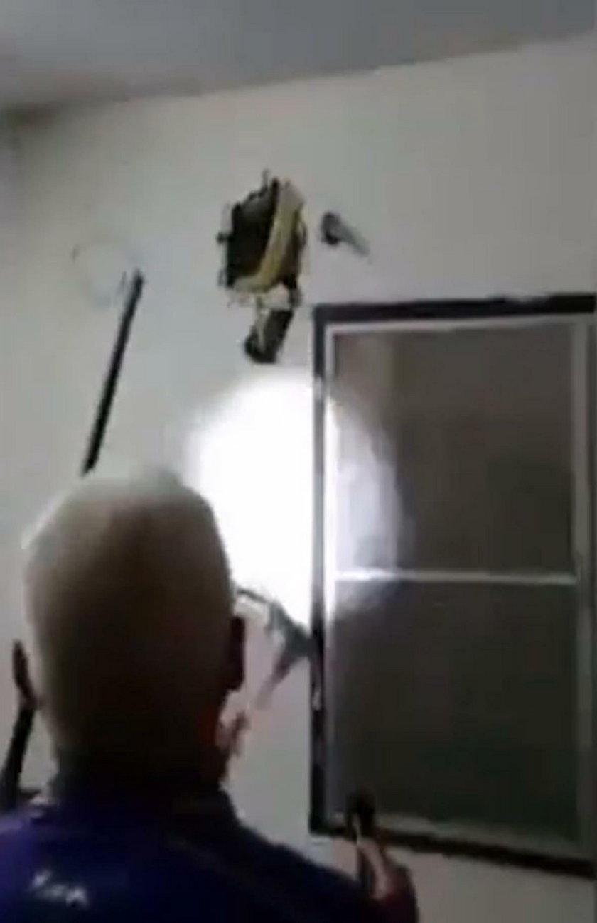 Pyton w ścianie mieszkania w Bangkoku! Przerażające odkrycie