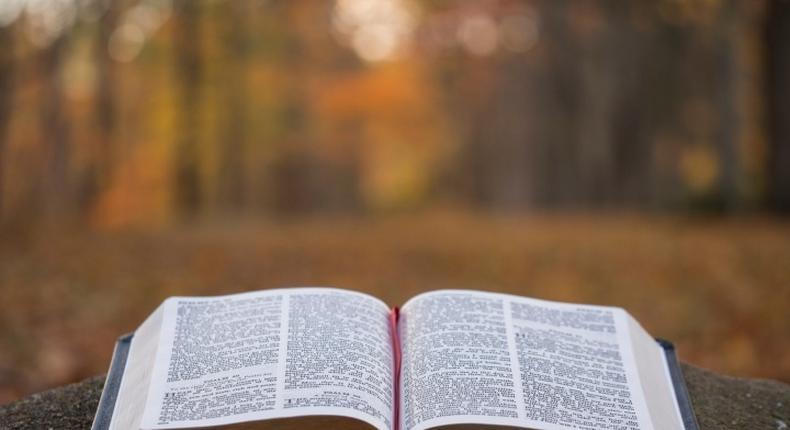 Bible (Facebook Bible Verse Daily)