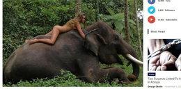 Pozowała nago na słoniu. Burza w sieci. To budzi niesmak!