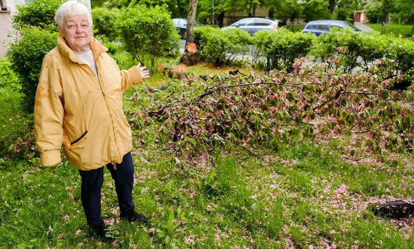 Krystyna Szaran, lokatorka z ul. Brzozowej chce by spółdzielnia uporządkowała teren przed blokiem