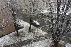 sneg karaburma