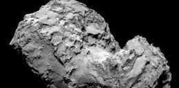 Niesamowite! Ta kometa ma twarz!