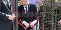 Tylko w FAKT24: Jarosław Kaczyński chodzi o kulach. Widać, że cierpi