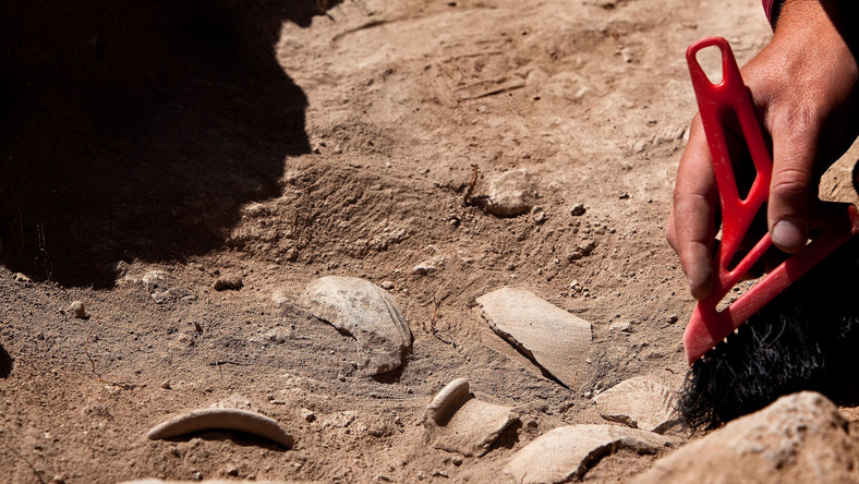 Archeolog przy pracy