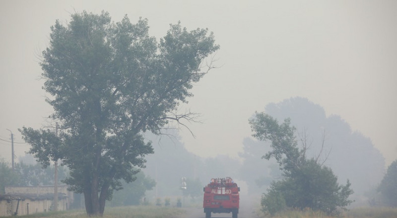 Ukraine says forest fires under control