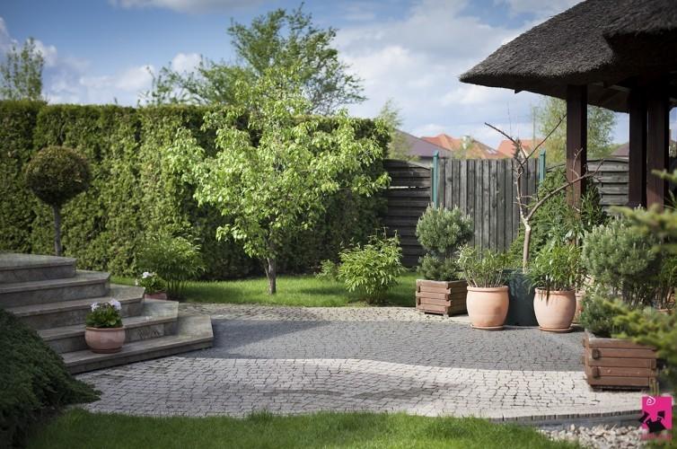 Fantastyczny ogród pod Sochaczewem. Ma aż 2 tys. mkw