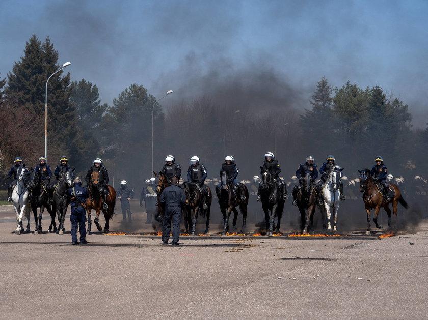 Policyjne konie zdawały ważny egzamin