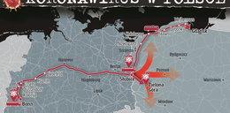 Alarm! Koronawirus w Polsce. Zaraza może być wszędzie