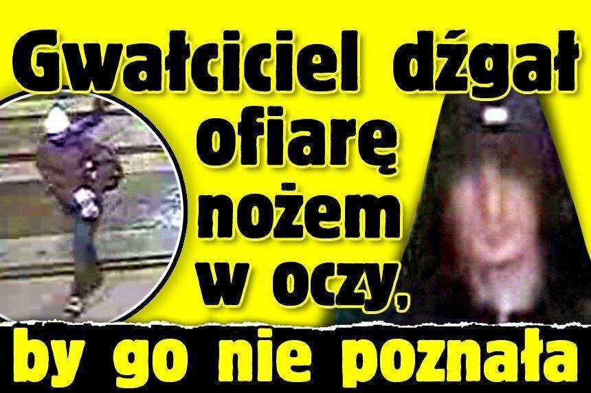 czarnogra opinie forum reviews | 4371