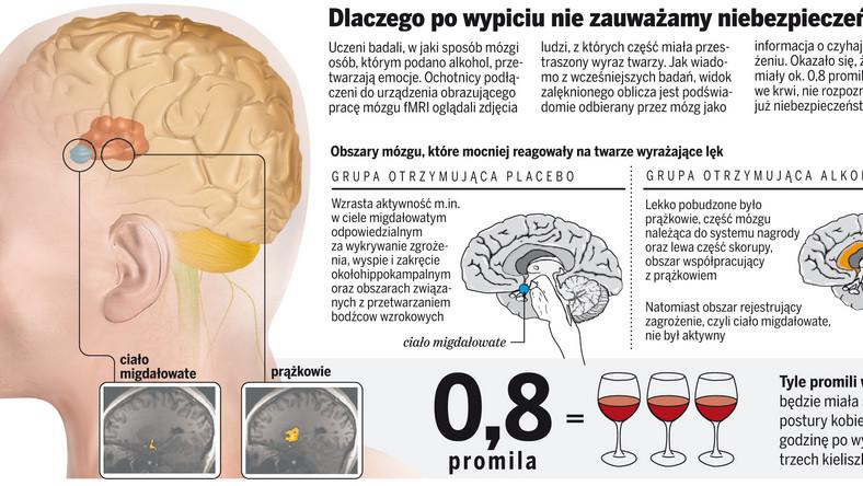 Picie znieczula mózg