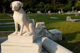 Groblje ljubimci profimedia-0091109098