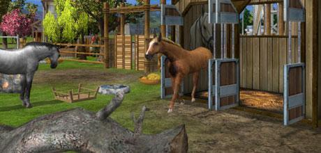 "Screen z gry ""Wildlife Park 2: Świat koni"""