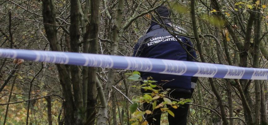Zwłoki kobiety znalezione w lesie w Poznaniu