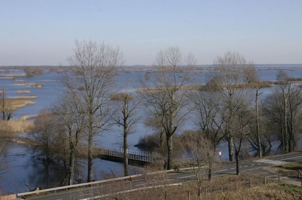 """Widok z wieży widokowej w Chyrzynie, Park Narodowy """"Ujście Warty"""""""